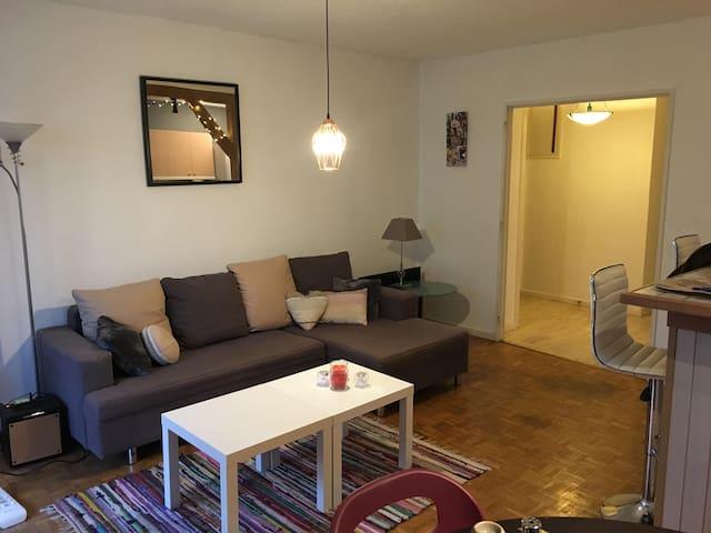 Appartement T3 spacieux et lumineux