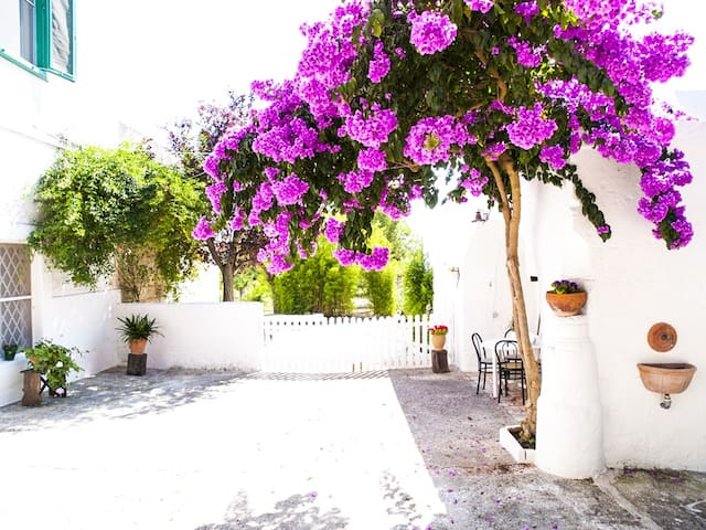 Romantic escape Puglia countryside - Monopoli
