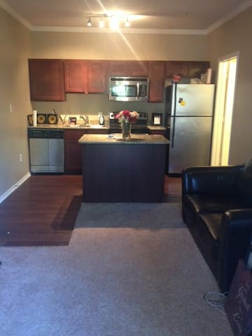 Cozy Apartment on S. Mopac Expy