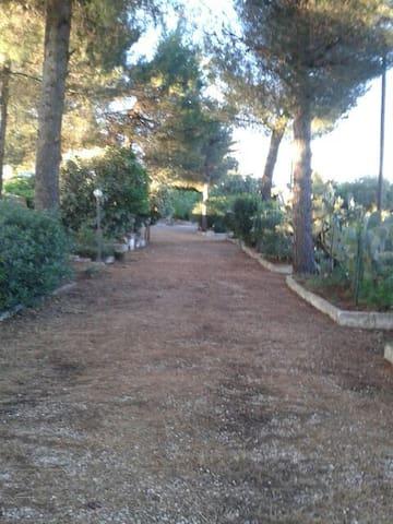 Trullo Cavallerizza - Cisternino - Villa
