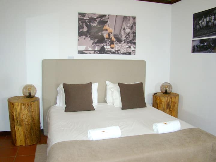 Studio in Armamar, with wonderful mountain view, shared pool, furnished terrace
