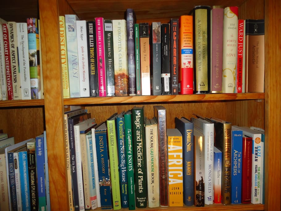 Some books on the shelf in main sitting room