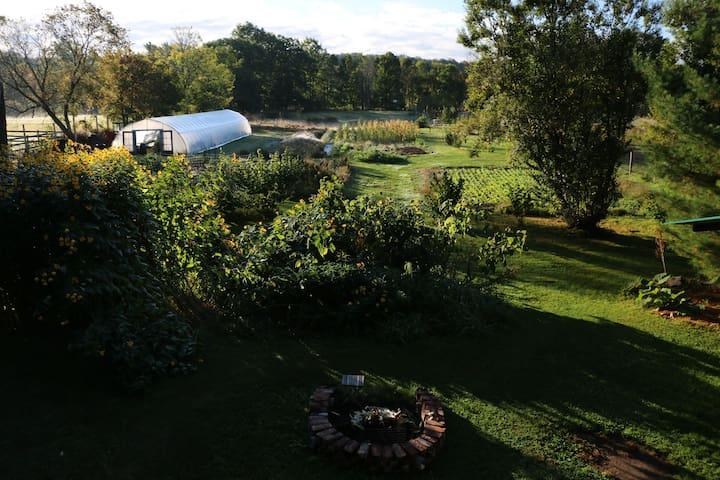 Quinta do Conde Farm Stay