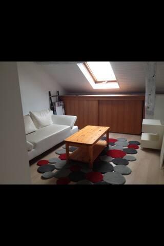 Beau 3 piéces lumineux hypercentre - Angers - Apartment
