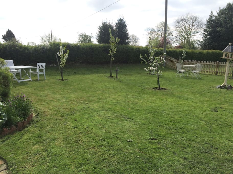 Lawns to the right of the seating area (fully enclosed for dogs)