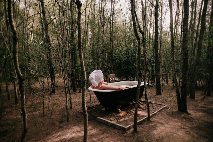 Billabong Moon - Tree Tops Lodge