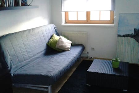 cosy flat in SOM area & free snowshoes 4 your tour - Hof bei Salzburg