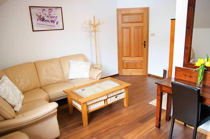 Double room Comfort | Vila Pod Branou