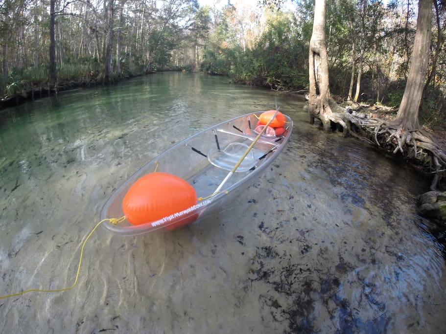 We also have two clear kayaks available for rent!