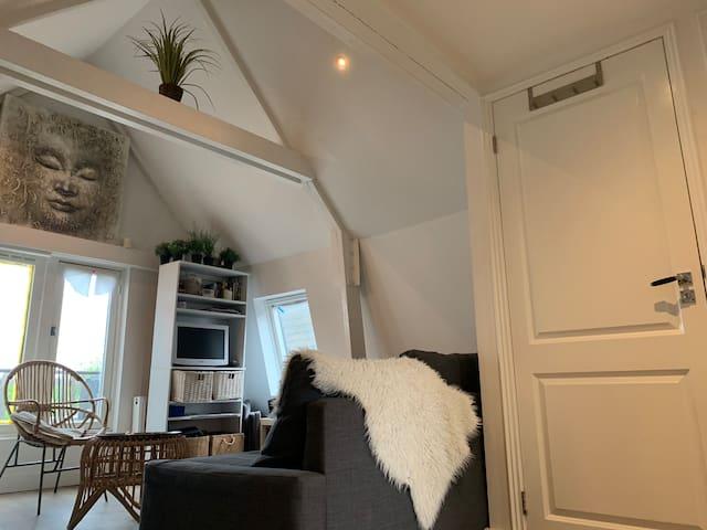Loft apartment in populair area!