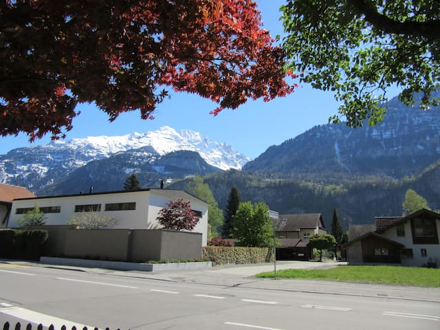 Cozy flat for two - Meiringen - Meiringen - Appartement