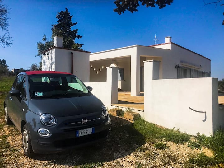 Villa Andrea 72013 | Modern Villa in Countryside