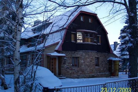 Villa for 24 pers.for 320.- eur/ngt - Altenberg