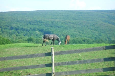 See horses grazing from your window - Kerhonkson - Casa
