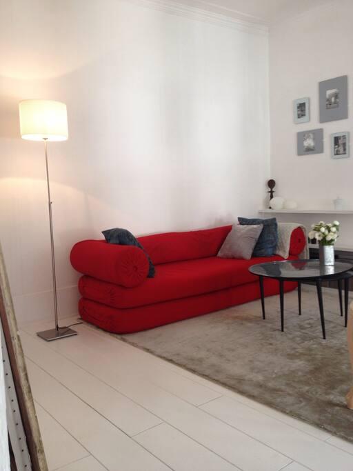 The sofa / canapé : lit une personne ou : deux futons au sol . Matelas / confort de qualité.