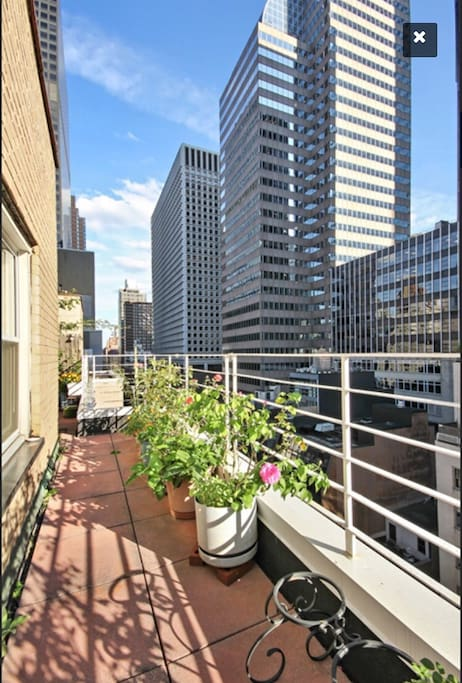 Penthouse huge balcony on lex 1br apartments for rent for New york balcony
