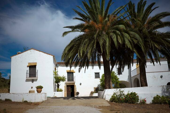 Antigua casa-lagar del siglo XVIII - Cáceres - Haus