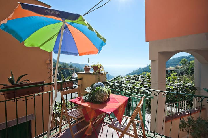 House in the hills close to the sea - Manarola - Flat
