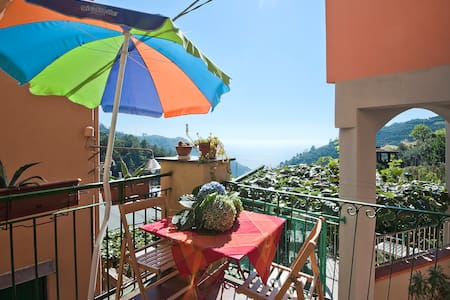 House in the hills close to the sea - Manarola