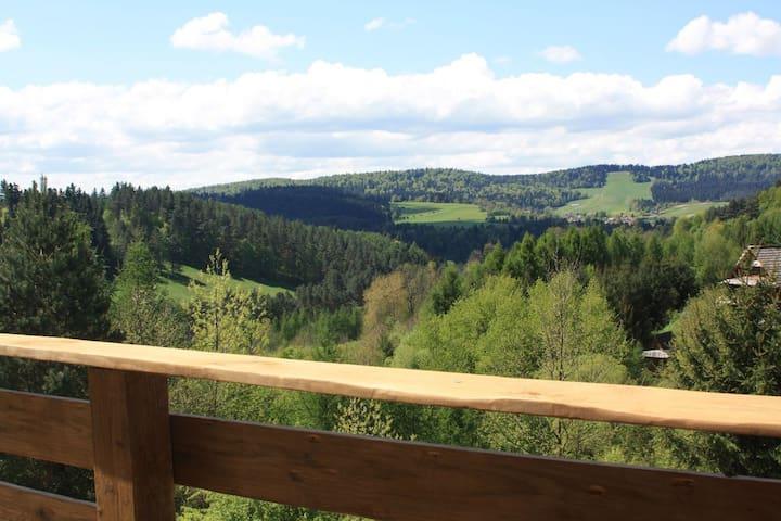 Apartament Zielony Widok - noclegi Bieszczady. - Lesko - Appartement