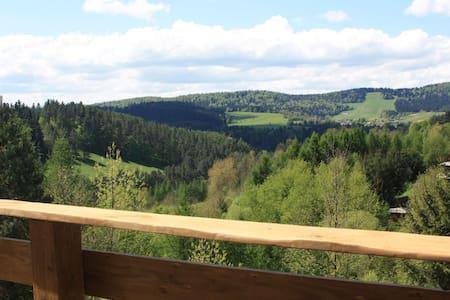 Apartament Zielony Widok - noclegi Bieszczady.
