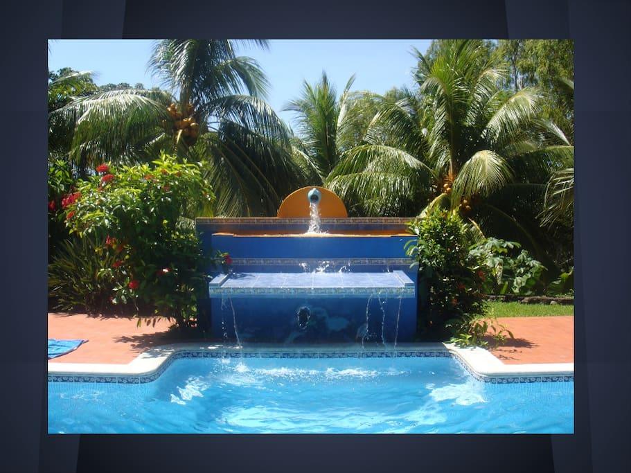 the pool's waterfall
