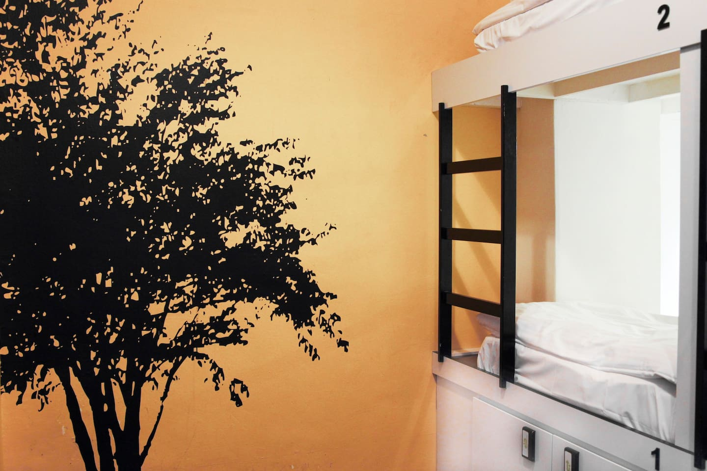 Tree- and colour-themed rooms