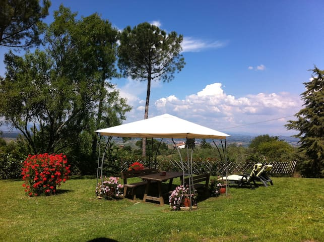 Panoramic apartment in the heart of Tuscany - Montaione - Flat