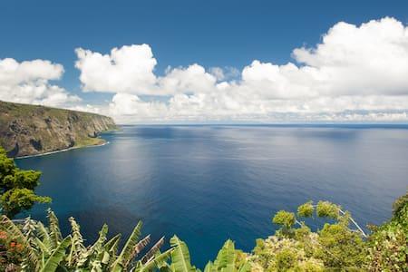 2 BD ocean cliff,fruit, epic views! - Honokaa