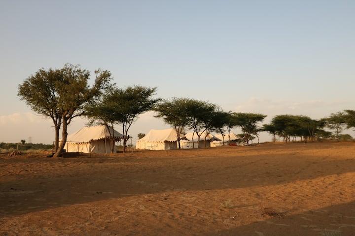 Wild desert Resort