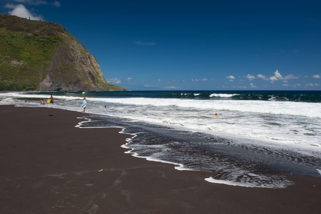 Waipio's famous black sand beach below the property