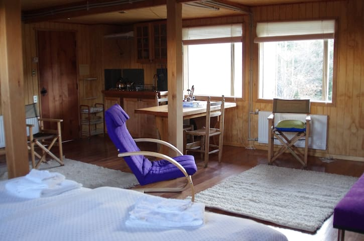 Depto. Nalcahue I, Villarrica Rural - Villarrica - Appartement