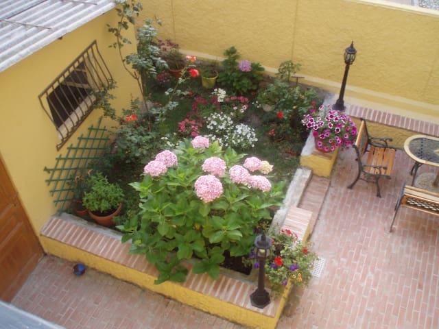 """Hydrangea house"" - Sanremo, Riviera Flowers"