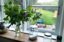 Blick aus der Küche in den Garten; eigener Ausgang in den Garten