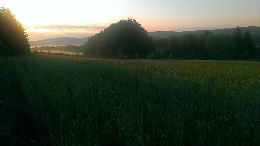 ... und viel Feld und Wald drumherum