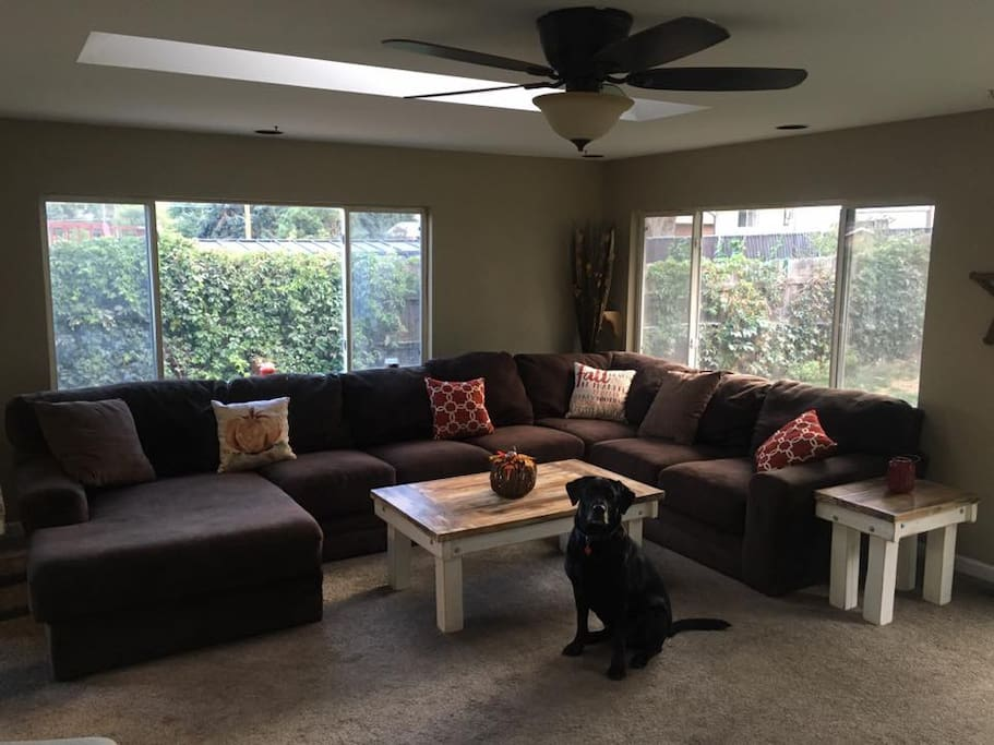 Shared Living Room and my dog Geno!