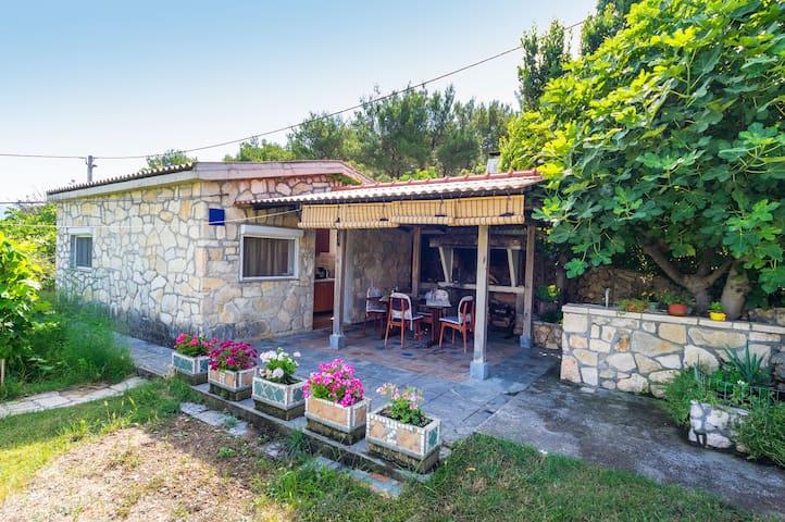 Villa Rose - Novigrad - Casa