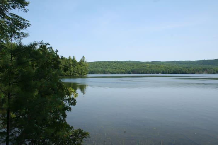 Off the Grid Lakeside Island Cabin