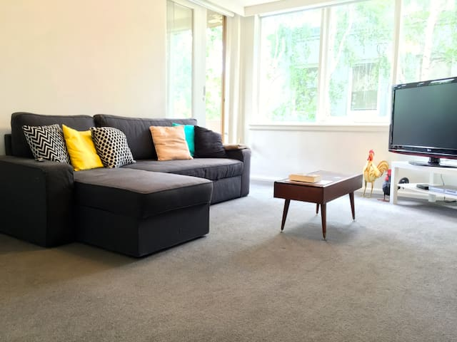 Spacious & spotless apartment in South Yarra - South Yarra - Flat
