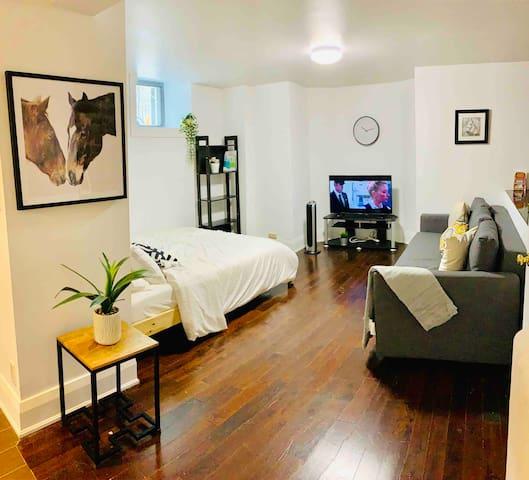 Spacious bachelor apartment - Parkdale Mansion