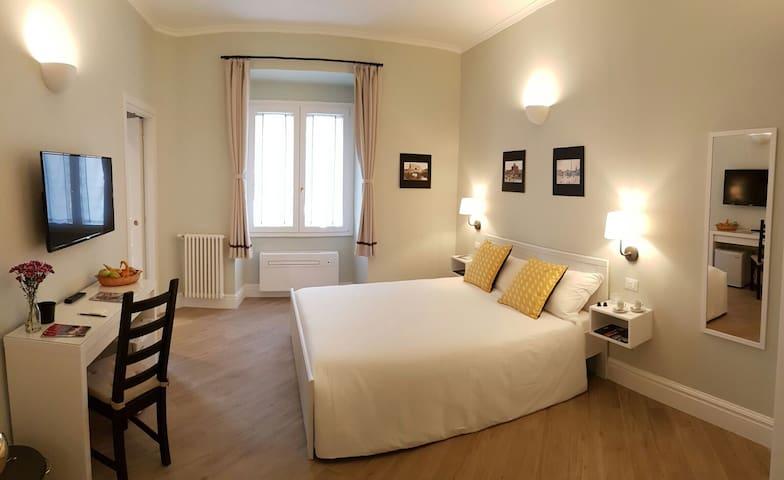 Roman Suite Guesthouse, S.Pietro, Vaticano - Room1