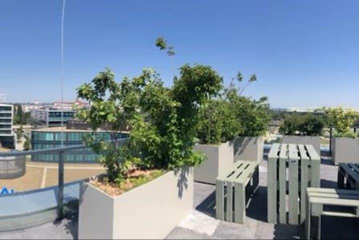 Roof Top Terrace - Dachterrasse