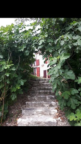 Sleeps 1-4: Quercy Blanc 2bed house - Valprionde - Talo