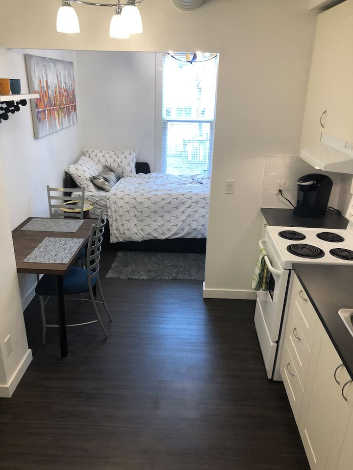 Fresh and Modern Downtown Studio + Wifi/Netflix