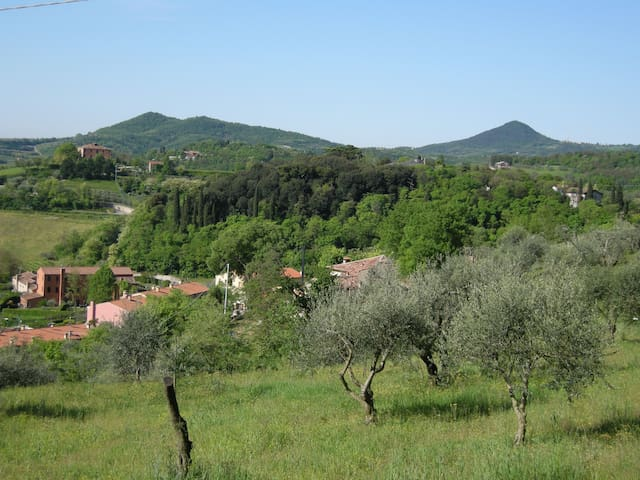 Holiday house in a beautiful medieval village. - Arquà Petrarca - Apartamento