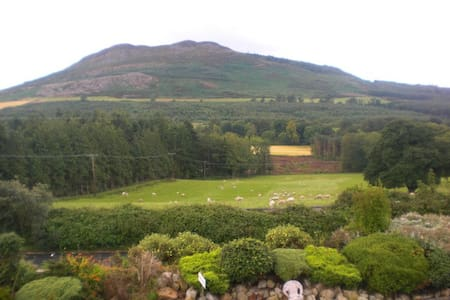 Spacious Family room with view - Greystones - Bed & Breakfast