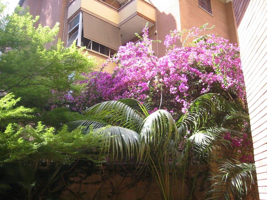 Uno splendido giardino privato di 60mq