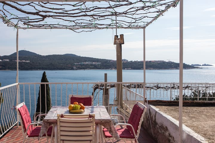 2Bedroom apartment Angelina with terrace&sea view - Lozica - Leilighet