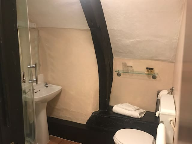 Double ensuite with shower at The Cridford Inn