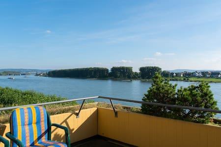 Ferienwohnung direkt am Rhein - Apartment